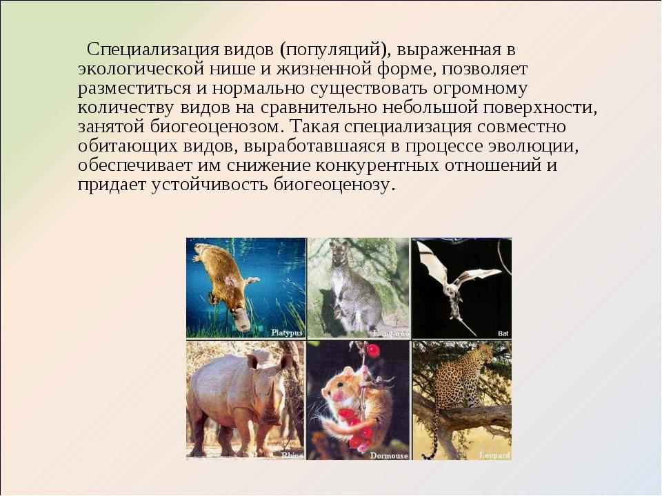 Специализация видов (популяций), выраженная в экологической нише и жизненной...