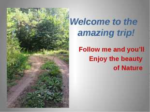 Welcome to the amazing trip! Follow me and you'll Enjoy the beauty of Nature