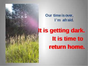 Our time is over, I'm afraid. It is getting dark. It is time to return home.