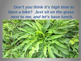 Don't you think it's high time to have a bike? Just sit on the grass next to