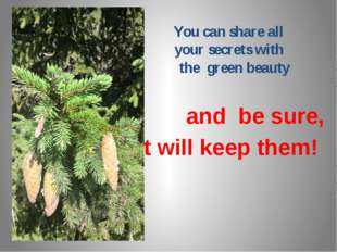 You can share all your secrets with the green beauty and be sure, It will ke