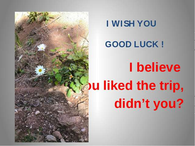 I WISH YOU GOOD LUCK ! I believe you liked the trip, didn't you?