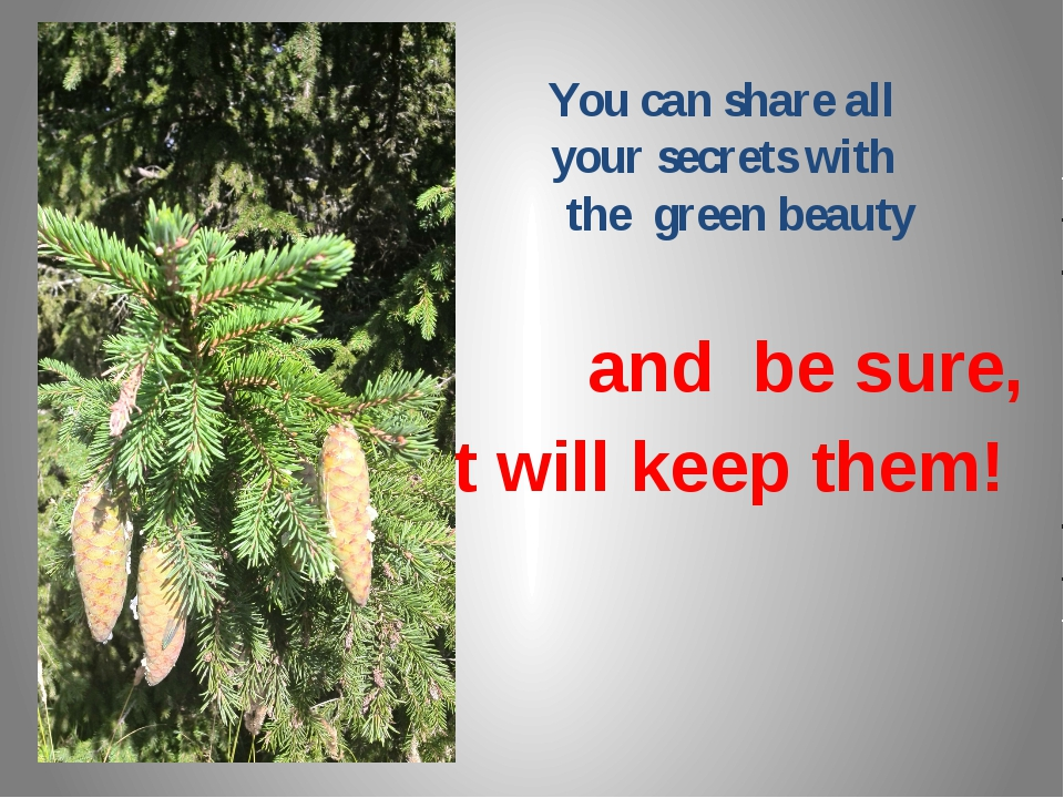 You can share all your secrets with the green beauty and be sure, It will ke...