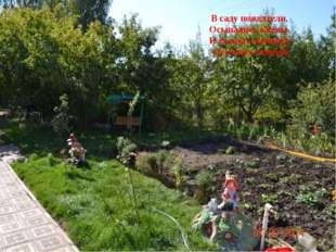 В саду пожелтели, Осыпались клёны, И только скамейка Осталась зелёной
