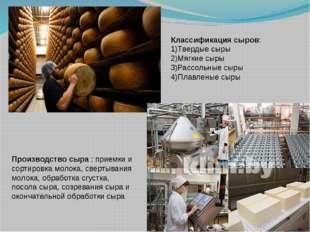 Производство сыра : приемки и сортировка молока, свертывания молока, обработк