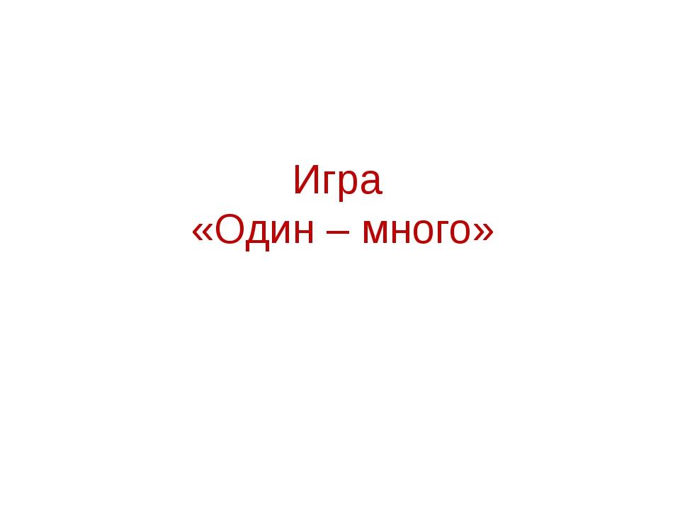 Игра «Один – много»