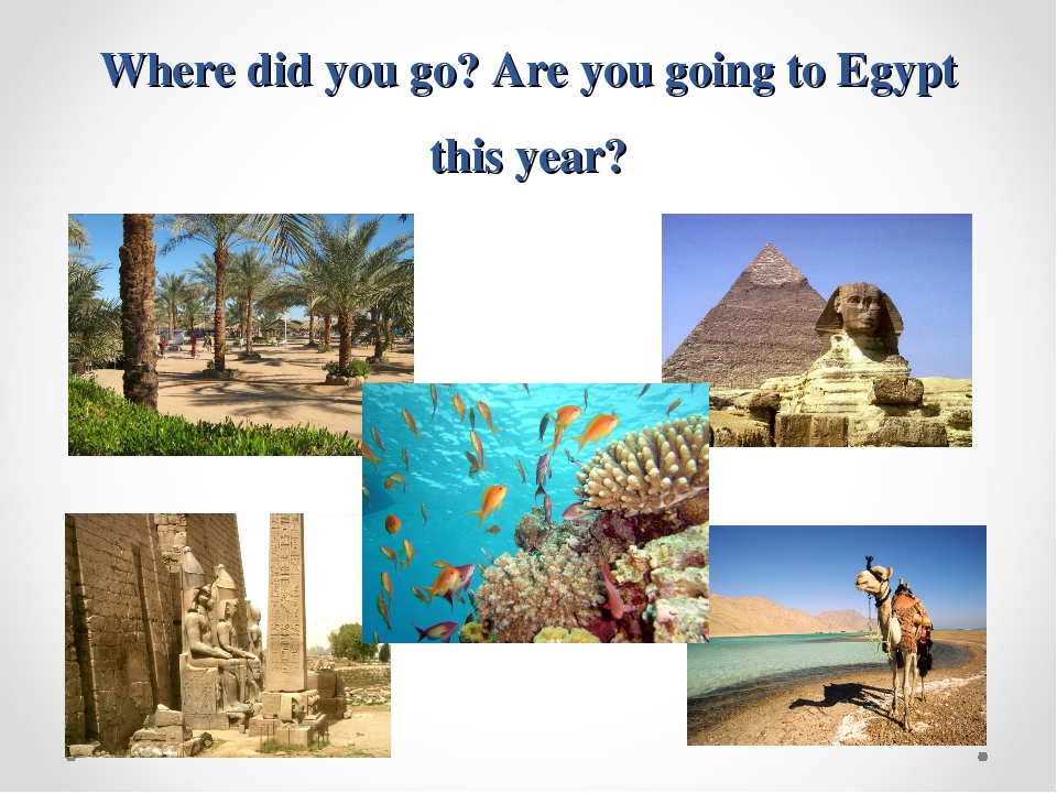 Where did you go? Are you going to Egypt this year?