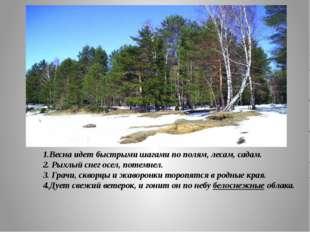 1.Весна идет быстрыми шагами по полям, лесам, садам. 2. Рыхлый снег осел, по