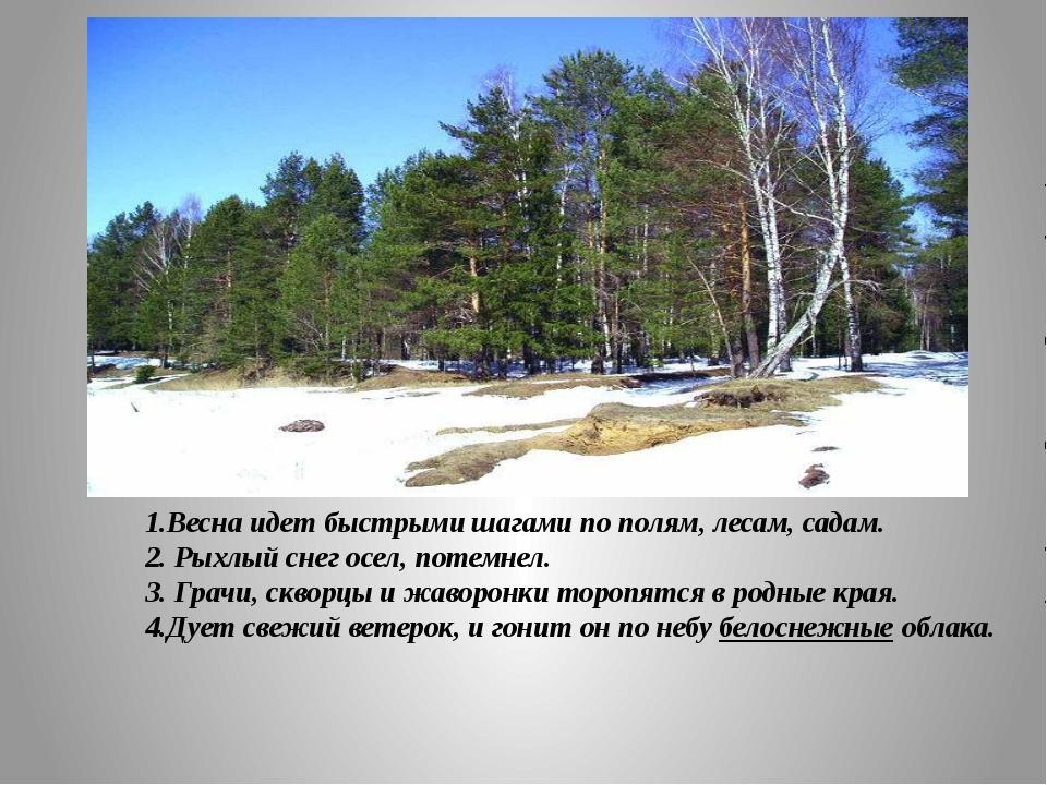 1.Весна идет быстрыми шагами по полям, лесам, садам. 2. Рыхлый снег осел, по...