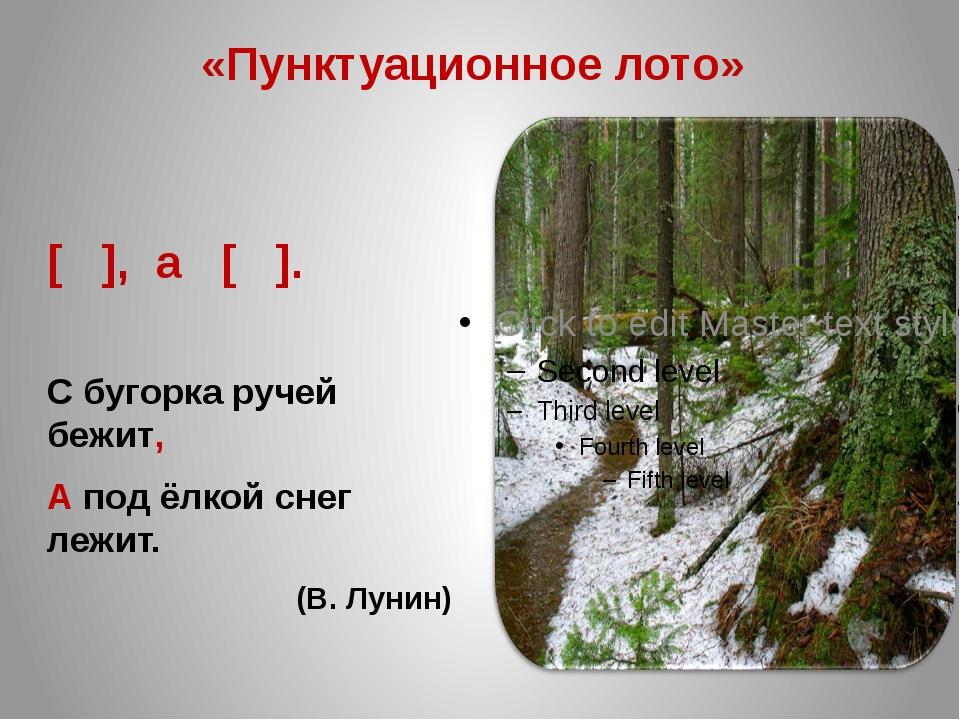 «Пунктуационное лото» [ ], а [ ]. С бугорка ручей бежит, А под ёлкой снег леж...