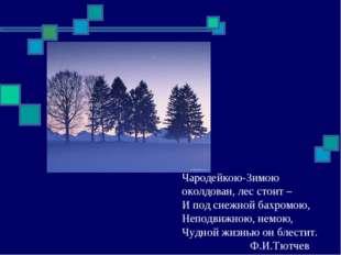 Чародейкою-Зимою околдован, лес стоит – И под снежной бахромою, Неподвижною,