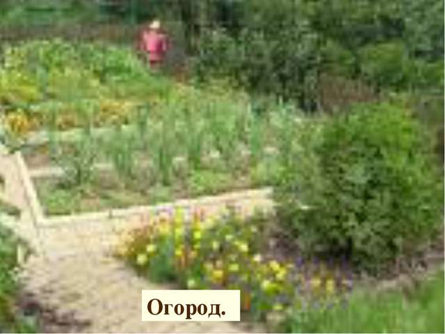 Огород.