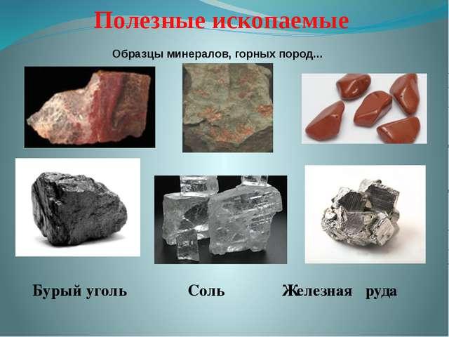 Бурый уголь Соль Железная руда Образцы минералов, горных пород... Полезные и...