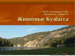 МБОУ «Ягуновская СОШ» Воспитатель: Лобова Е.Н. Животные Кузбасса