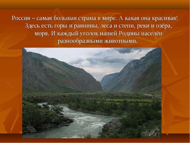 Россия – самая большая страна в мире. А какая она красивая! Здесь есть горы и...