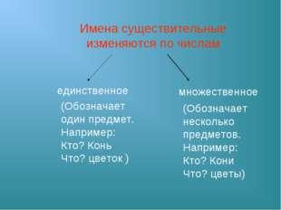 Имена существительные изменяются по числам единственное множественное (Обозна