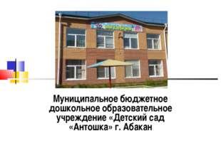 Муниципальное бюджетное дошкольное образовательное учреждение «Детский сад «А