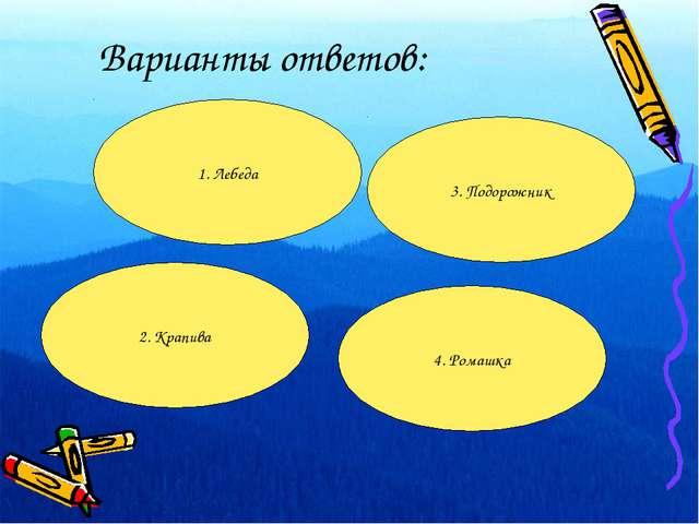 Варианты ответов: 1. Лебеда 2. Крапива 4. Ромашка 3. Подорожник