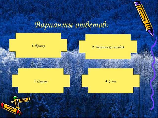 Варианты ответов: 1. Кошка 3. Страус 4. Слон 2. Черепашки-ниндзя