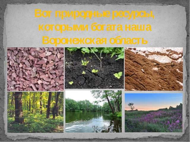 Вот природные ресурсы, которыми богата наша Воронежская область