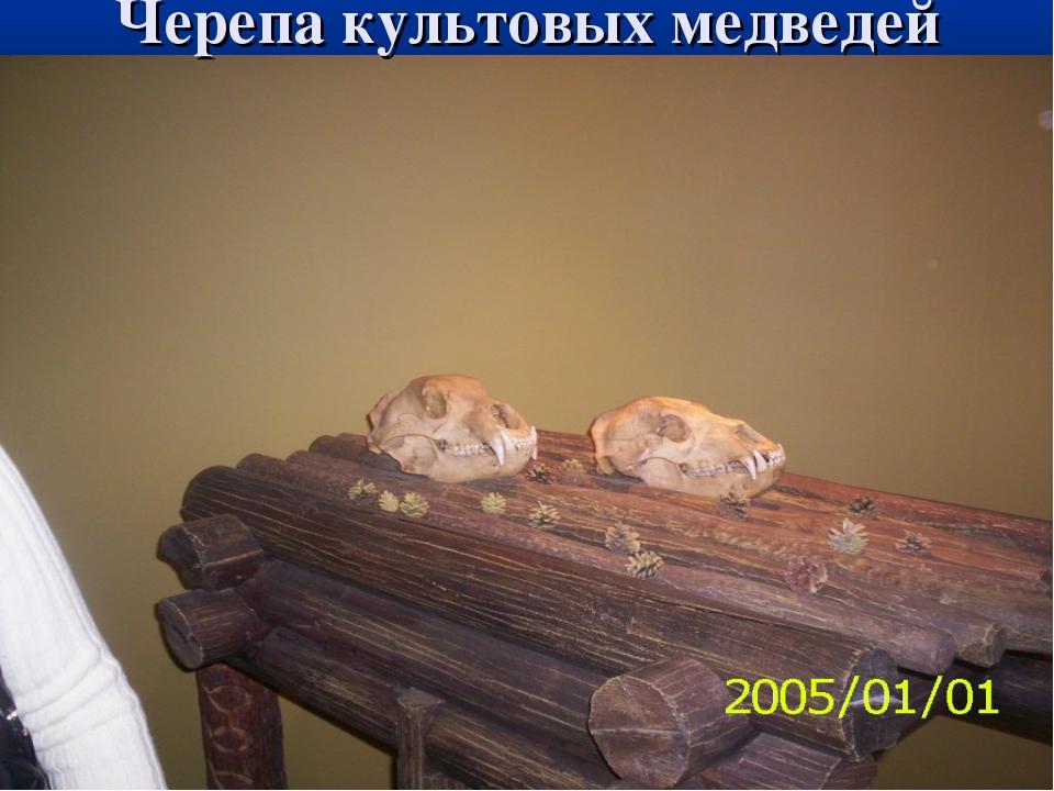 Черепа культовых медведей