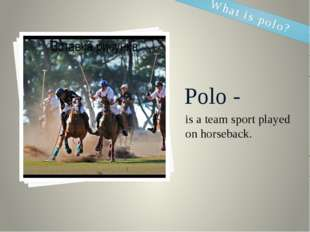 Polo - is a team sport played on horseback.  What is polo?