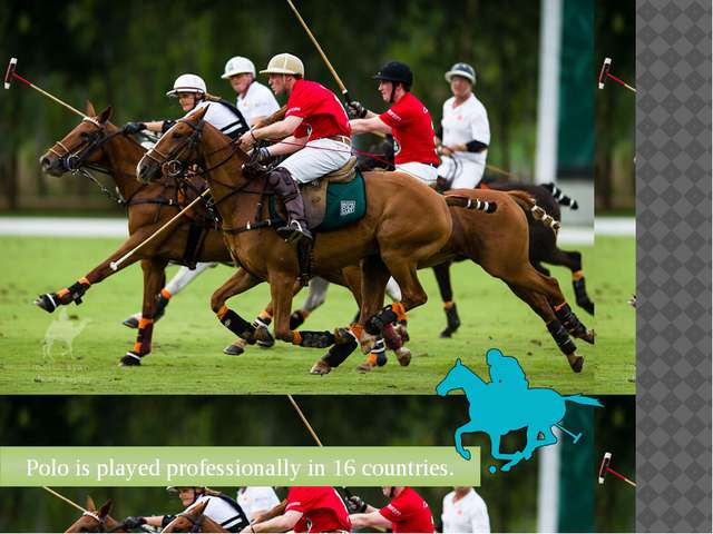 Polo is played professionally in 16 countries.