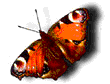 hello_html_m78b60fe2.png