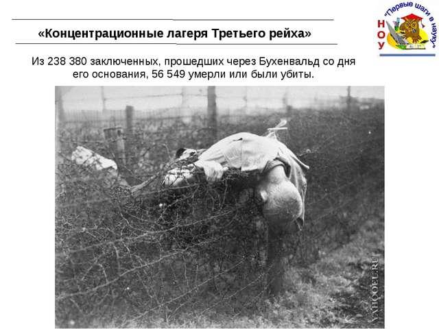 «Концентрационные лагеря Третьего рейха» Из 238 380 заключенных, прошедших че...