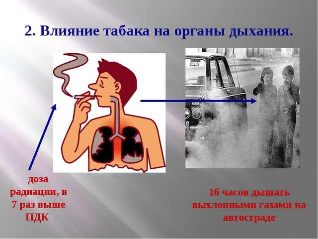 2. Влияние табака на органы дыхания. доза радиации, в 7 раз выше ПДК 16 часов...