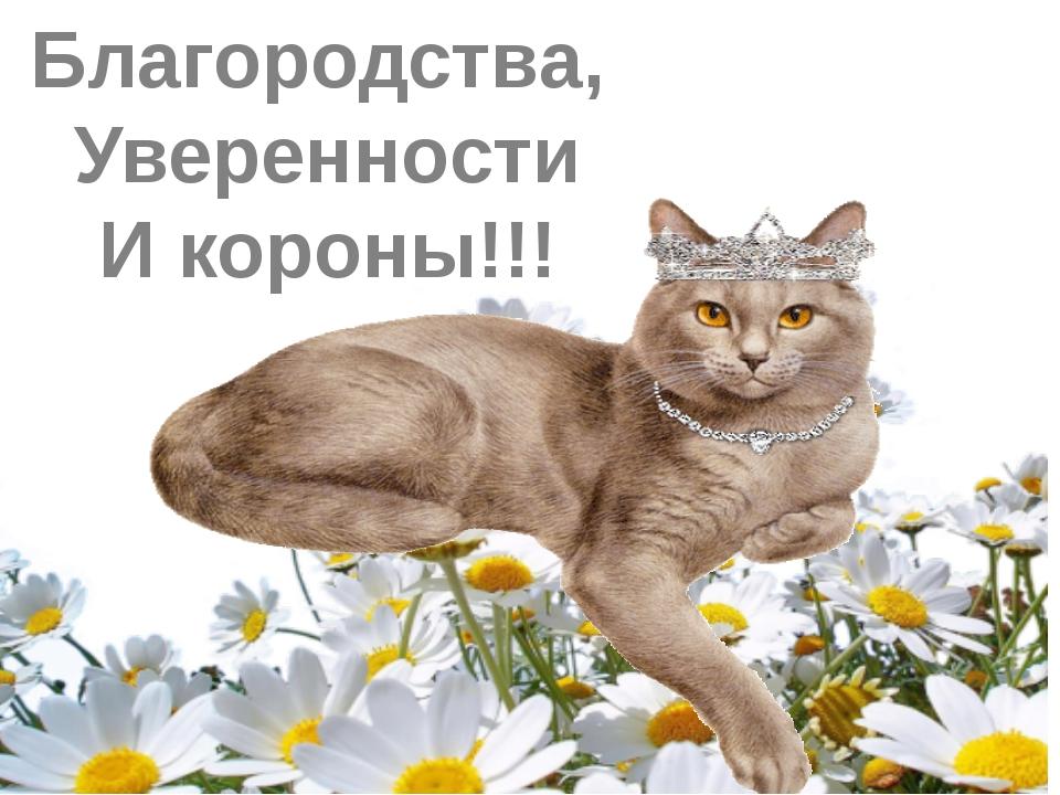 Благородства, Уверенности И короны!!!