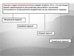 Зрелая стадия антропогеогенеза (первая четверть XX в.—по настоящее время) ха