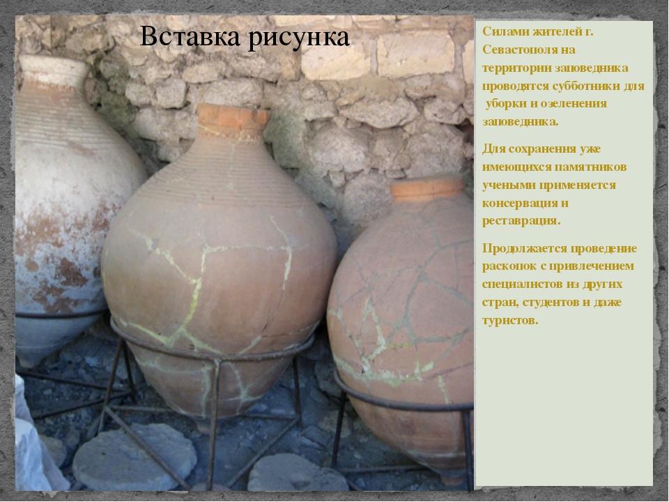 Силами жителей г. Севастополя на территории заповедника проводятся субботник...
