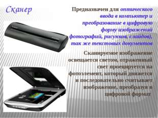 Сканер Предназначен для оптического ввода в компьютер и преобразование в цифр