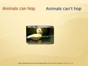 Идея перемещения объектов предложена Hans Werner Hofmann hw@lemitec.de Animal