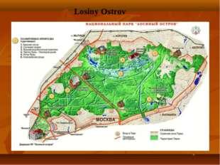 Losiny Ostrov