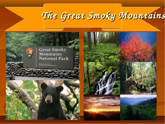 * The Great Smoky Mountains