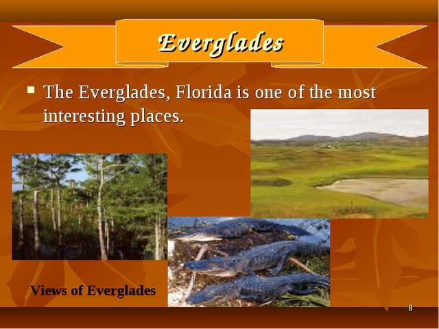 * Everglades The Everglades, Florida is one of the most interesting places. V...