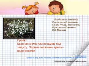 Автор проекта: Григорьев Егор. 7 лет. Ученик 2-Б класса МБОУ «Охотниковская с