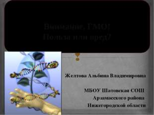 Желтова Альбина Владимировна МБОУ Шатовская СОШ Арзамасского района Нижегоро