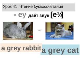 Урок 41 Чтение буквосочетания - еy даёт звук [eɪ] a grey cat a grey rabbit - еy