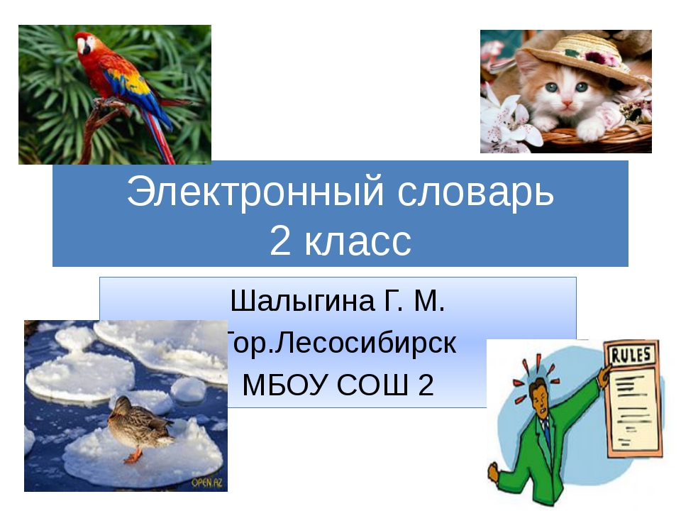 Электронный словарь 2 класс Шалыгина Г. М. Гор.Лесосибирск МБОУ СОШ 2