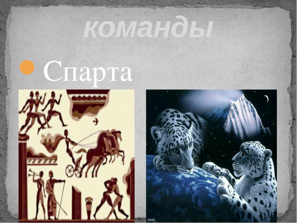 команды Спарта Барс