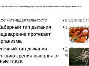 БЗ. Установите соответствие между процессом жизнедеятельности и видом животно