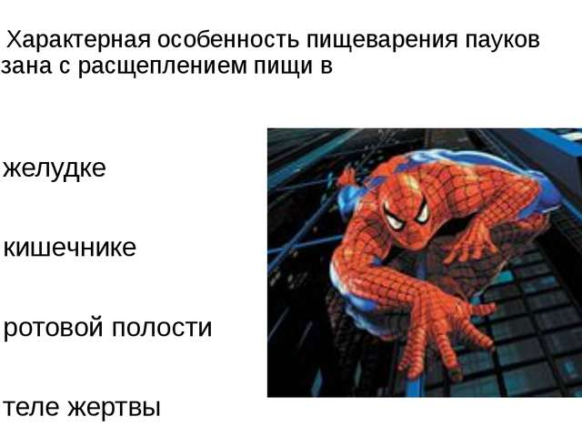 А9. Характерная особенность пищеварения пауков связана с расщеплением пищи в...