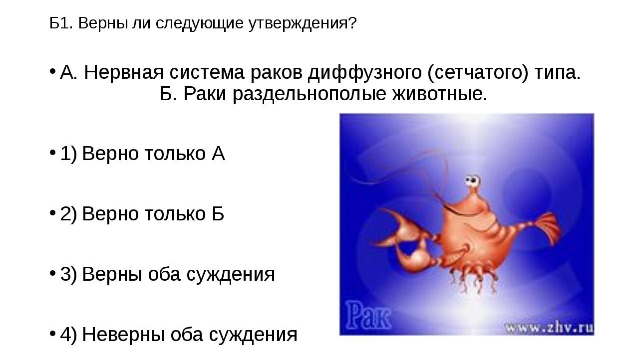 Б1. Верны ли следующие утверждения? А. Нервная система раков диффузного (сетч...