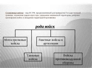 Сухопутные войска – вид ВС РФ, предназначенный для прикрытия Государственной