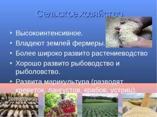 Сельское хозяйство. Высокоинтенсивное. Владеют землей фермеры. Более широко