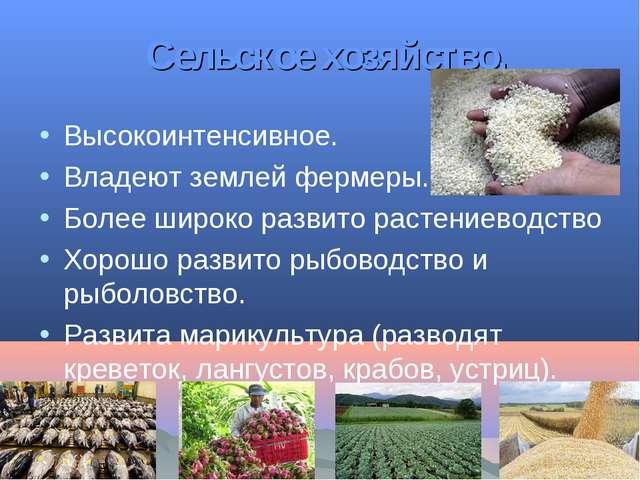 Сельское хозяйство. Высокоинтенсивное. Владеют землей фермеры. Более широко...