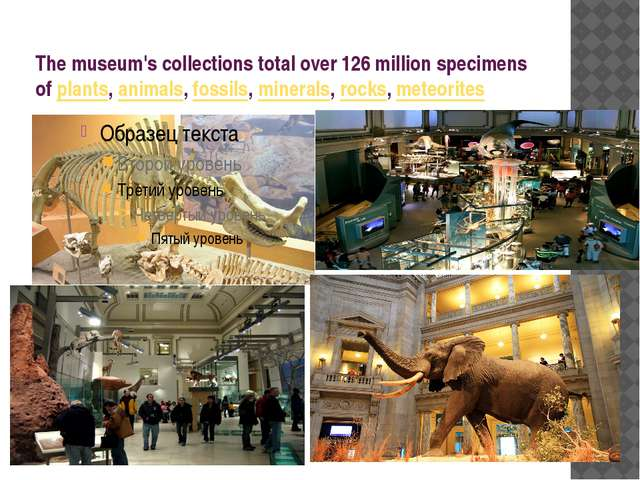 The museum's collections total over 126 million specimens of plants, animals,...